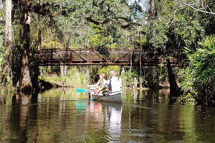 2-Hour Cypress Forest Guided Kayak Tour, Orlando, FL, ESTADOS UNIDOS