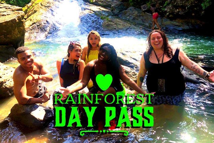 Rainforest Adventure Transportation from San Juan, San Juan, PUERTO RICO