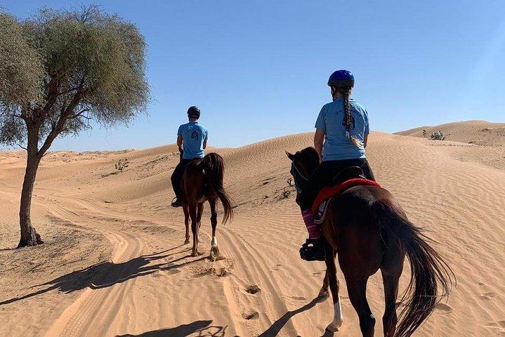 Desert ride, Ajman, United Arab Emirates