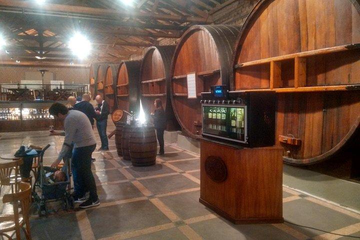 Caminos del vino Maipú, Mendoza, ARGENTINA