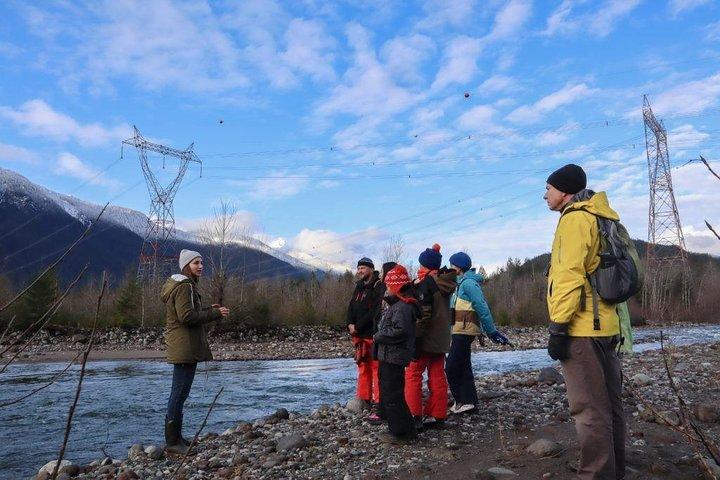 Eagle Viewing Tour, Squamish, CANADÁ