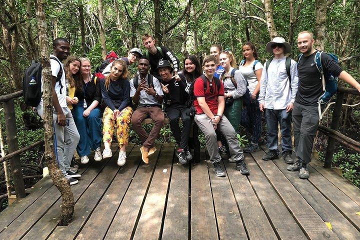 Half-Day Walking Tour in Jozani Jungle, Zanzibar, TANZANIA