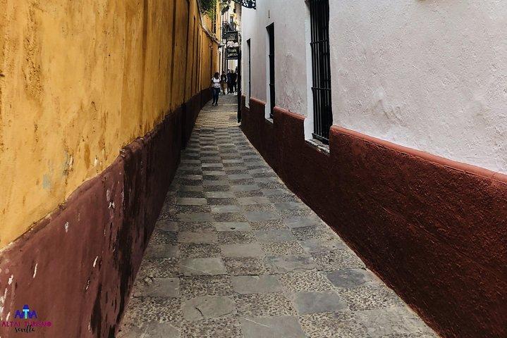 Essential Private Walking Tour of Seville, Sevilla, Spain