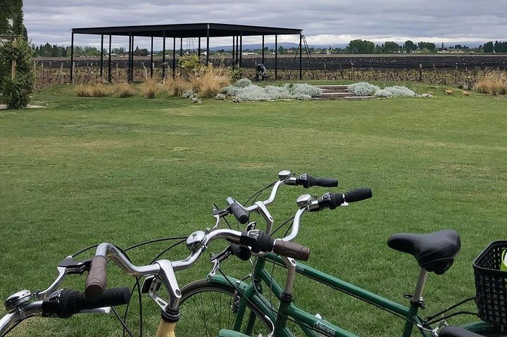 Tour autoguiado en bicicleta por Luján de Cuyo (Mendoza), Mendoza, ARGENTINA