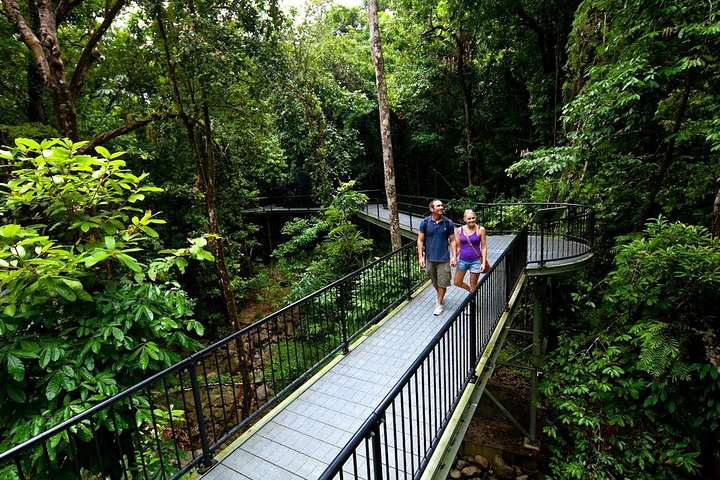 5-Day Best of Cairns with Daintree, Kuranda, and Great Barrier Reef, Cape Tribulation, AUSTRALIA
