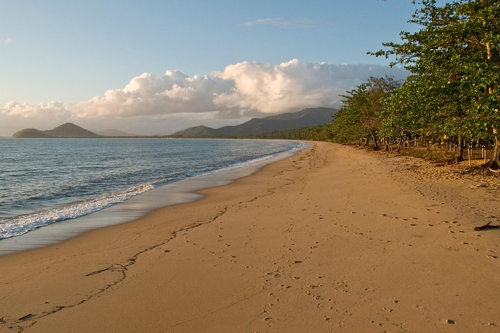 Cairns Reef and Rainforest Combo: Daintree Rainforest and the Great Barrier Reef, Cairns y el Norte Tropical, AUSTRALIA