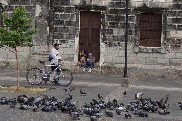 Private: León City Walking Tour from León, Leon, NICARÁGUA