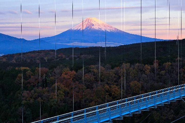 Private Tour - Do You Want to Try Skywalk? A New Way of Enjoying Hakone!, Hakone, JAPAN