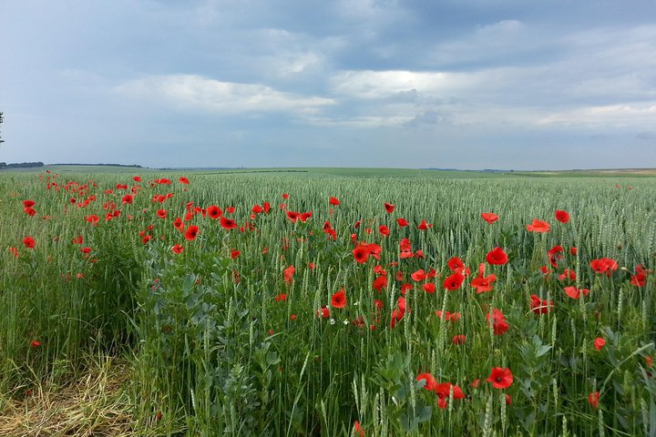 Australian private Somme tour including Sir John Monash Centre, Amiens, França