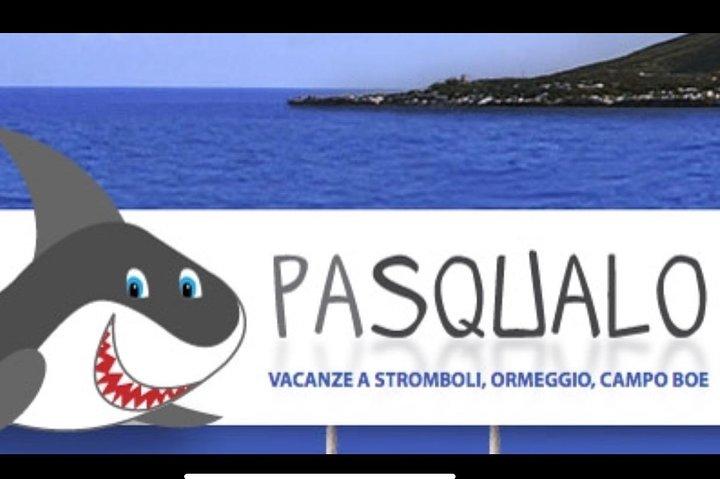 Sciara del Fuoco from the sea, night tour Pasqualo, Islas Eolias, ITALIA