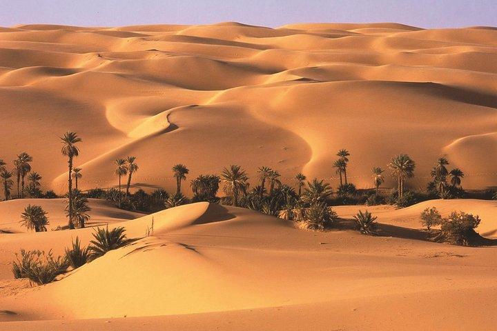Full Day LIWA 4x4 Safari With Lunch Included From Abu Dhabi, Abu Dabi, EMIRATOS ARABES UNIDOS