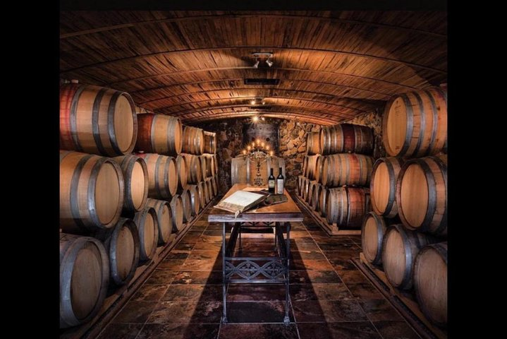 El Enemigo with Lunch and Trapiche Winery, Mendoza, ARGENTINA