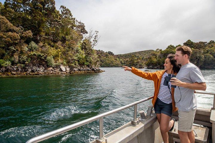 Ulva Island Explorer from Stewart Island, Stewart Island, NUEVA ZELANDIA