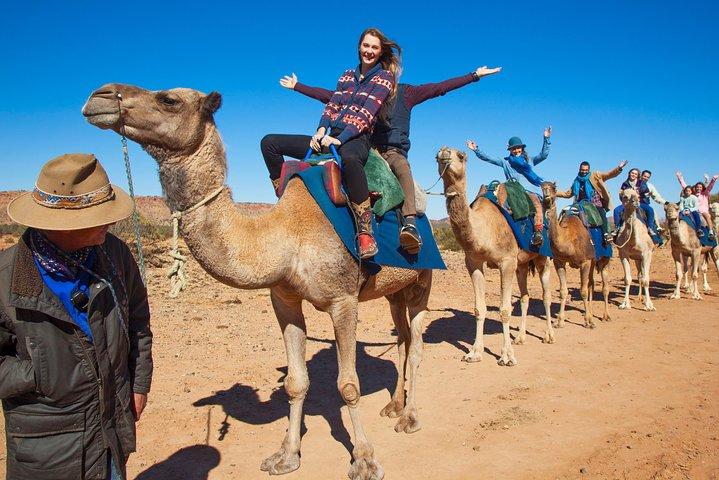 Alice Springs Camel Tour, Alice Springs, AUSTRALIA