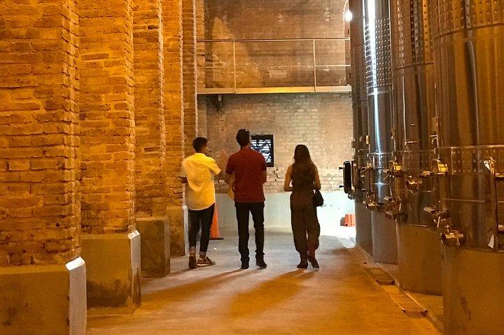 Half Day Private WineTour, Lujan de Cuyo, Mendoza, ARGENTINA
