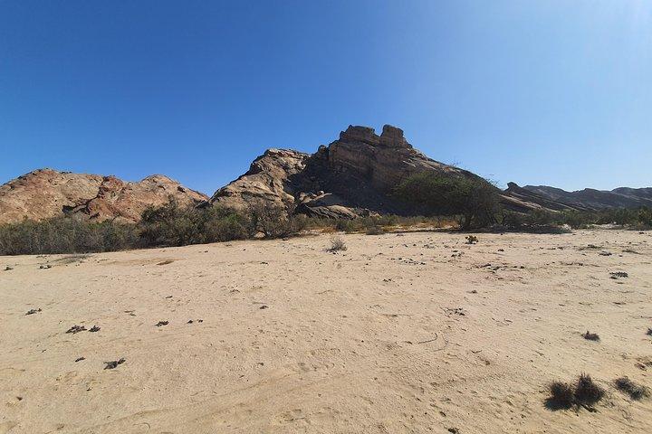 Moon Landscape including Welwitchia Plains, Swakopmund, NAMIBIA