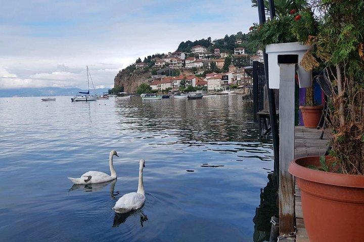 Day tour of Ohrid from Tirana, Tirana, Albania