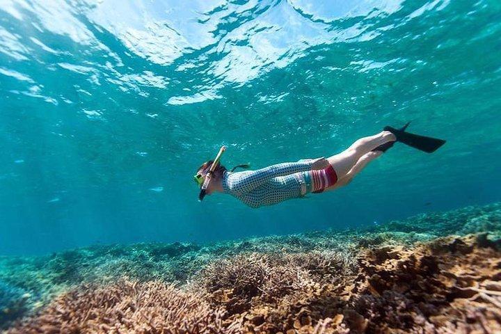 Snorkeling at Tumbatu Island reef | Private Trip, Zanzibar, TANZANIA