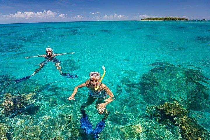 Dolphins, Snorkeling and Sandbank at Mnemba Island reef, Zanzibar, TANZANIA