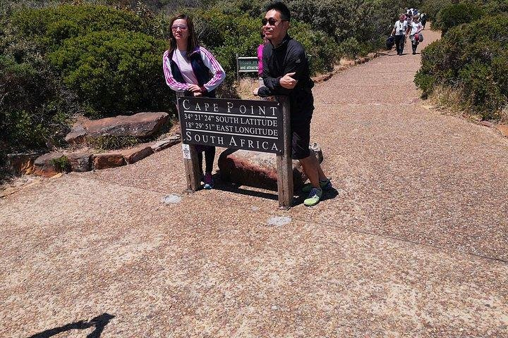 Private Cape Good Hope Cape Point Penguins Kirstenb. Day Tour from Franschhoek, ,