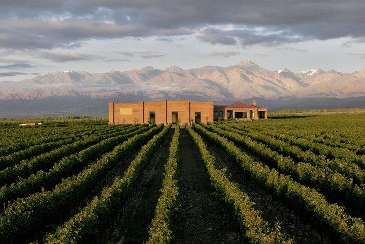 Tour Privado Vinicolas Valle de Uco, Mendoza, ARGENTINA