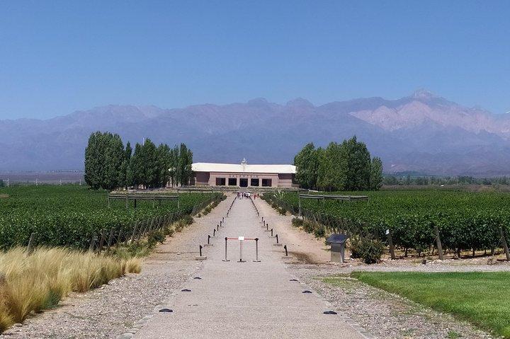 Ultimate Valle de Uco Wine Tour, Mendoza, ARGENTINA