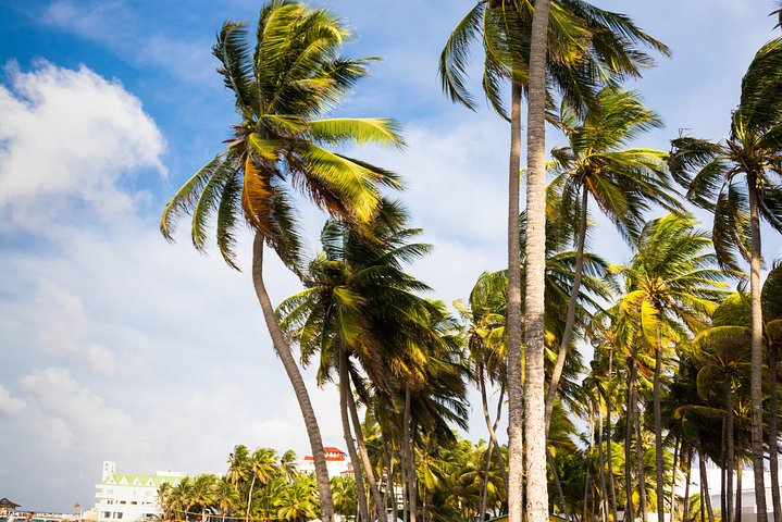 Private Arrival Transfer : From Airport to San Andres Island Hotels, San Andres, COLOMBIA