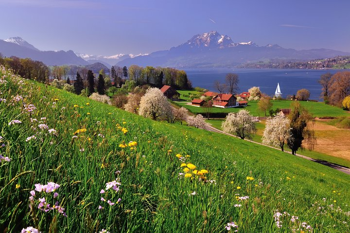 Full-Day Private Tour of Lake Lucerne and Swiss Knife Valley, Lugano, SUIZA