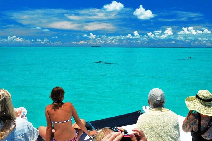 Key West Day Trip from Miami with Optional Activities, Miami, FL, UNITED STATES