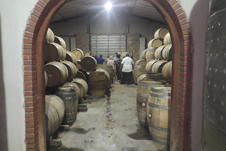 Stellenbosch Half Day Wine Tour, Cape Town, South Africa