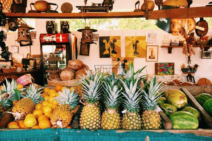 Little Havana Food and Walking Tour in Miami, Miami, FL, ESTADOS UNIDOS