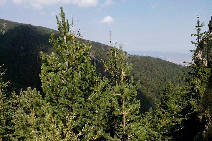 Private Vitosha Mountains Hiking with Black peak & Dragalevtsi Monastery, Sofia, BULGARIA