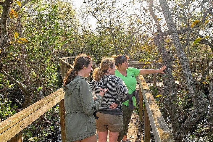 1-Hour Air boat Ride and Nature Walk with Naturalist in Everglades National Park, ,