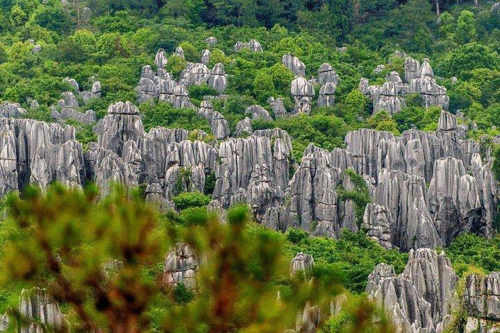 4-Day Private Yunnan Discovery from Shenzhen: Kunming, Dali and Lijiang, Shenzhen, CHINA