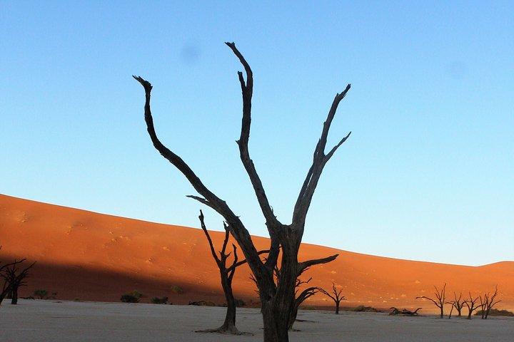3-Day Private Namib Desert and Naukluft Park from Swakopmund, Swakopmund, NAMIBIA