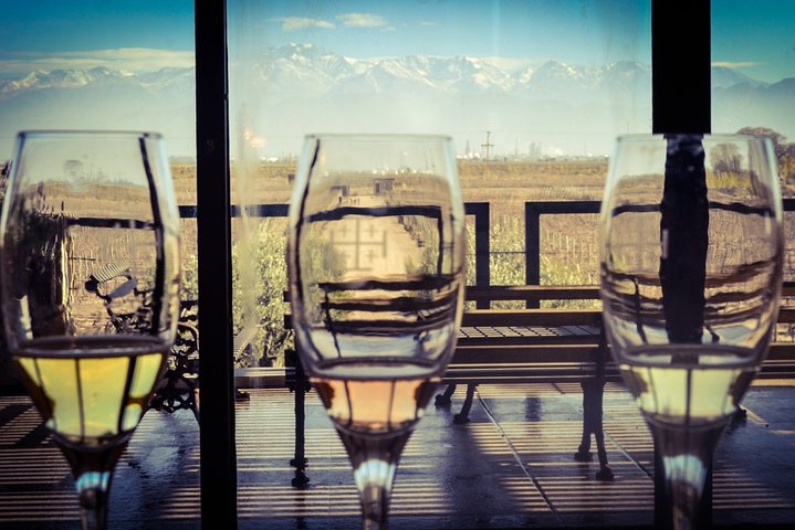 Mendoza Sparkling Wines Tour with Lunch, Mendoza, ARGENTINA