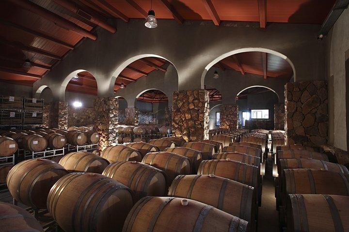 Prova de vinhos Luján de Cuyo, Mendoza, ARGENTINA