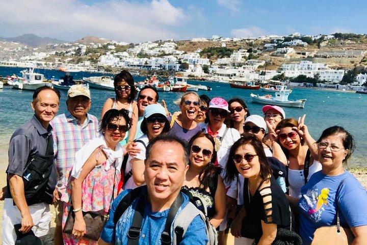 Private Highlights of Mykonos Tour, Miconos, GRECIA