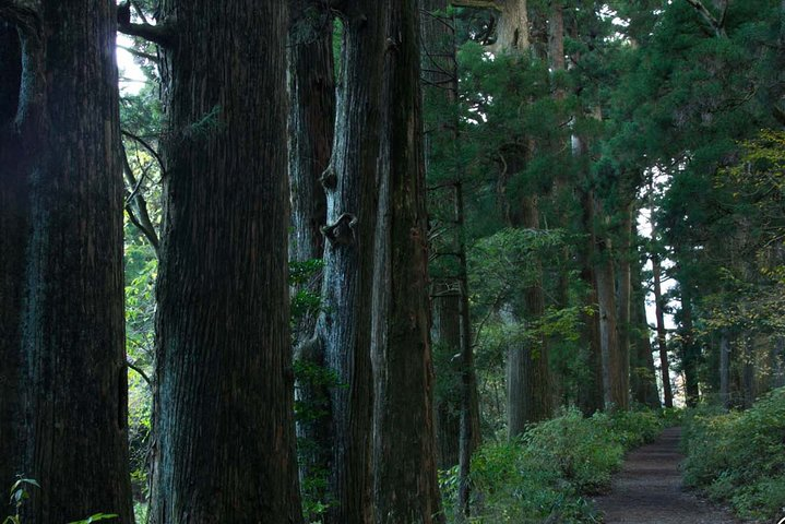 Custom Private Tour in Hakone with Optional Hot Springs Experience, Hakone, JAPÃO