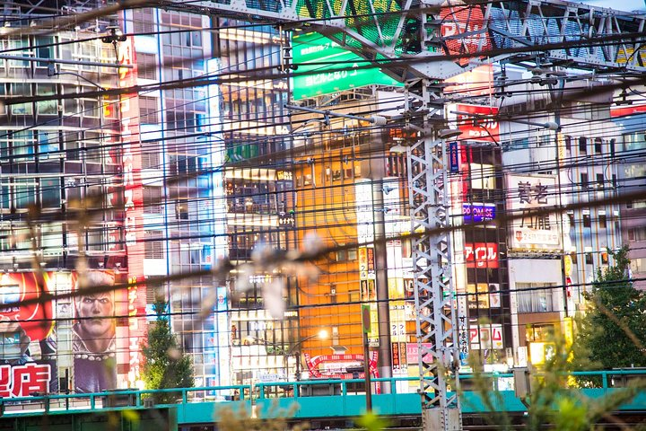 Tokyo Online: Virtual Experience in Shibuya and Shinjuku with a Local Expert, Tokyo, JAPON