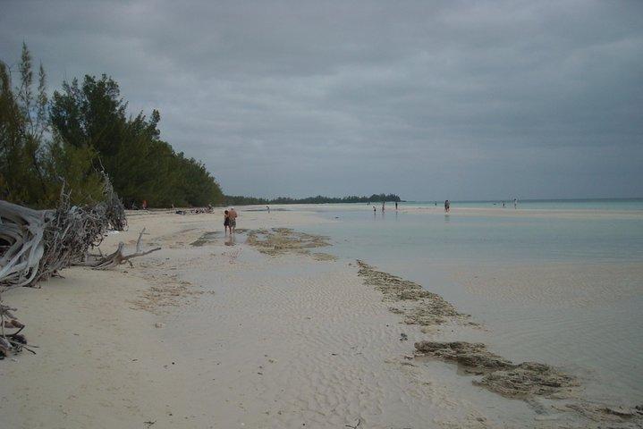 Bahamas Get-A-Round Bus Pass, Freeport, BAHAMAS
