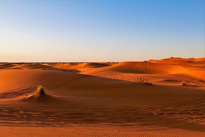 Morocco Adventure Safari 14 Days 13 Nights ( Comfort Plus ), Fez, MARRUECOS