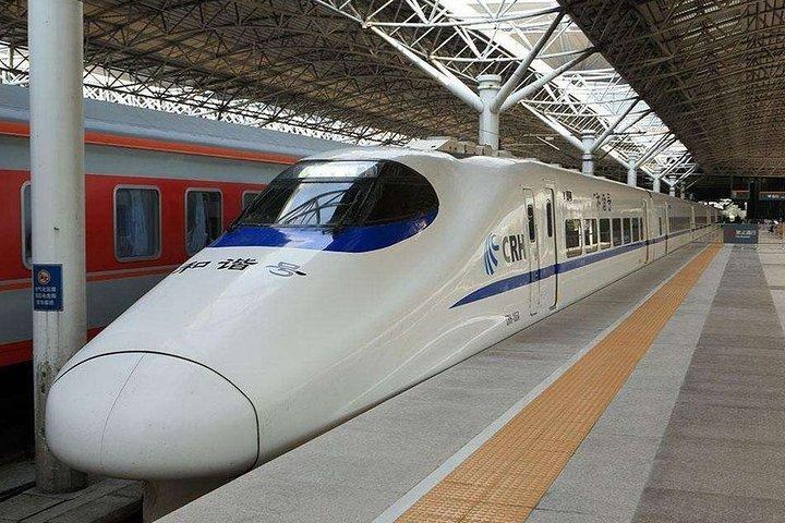 Private Arrival Transfer:Any Shenzhen Railway Station to Shenzhen City Hotel, Shenzhen, CHINA