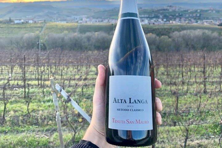 Private Wine Tasting Selection in Castagnole delle Lanze, Asti, ITALIA