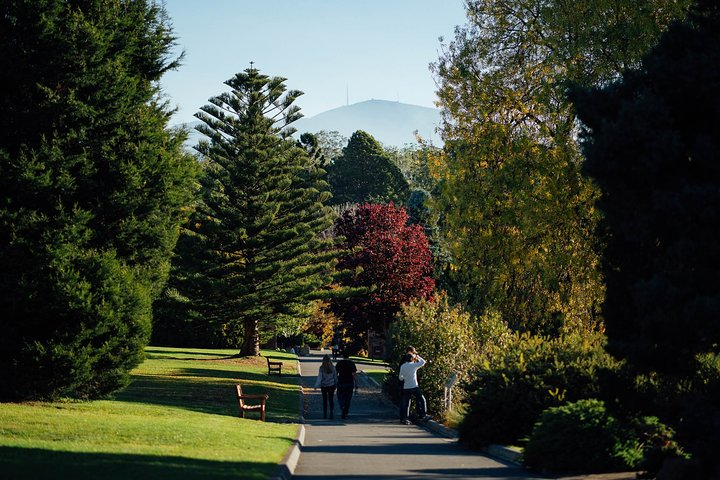 Private Royal Tasmanian Botanical Gardens Walking Tour, Hobart, AUSTRALIA