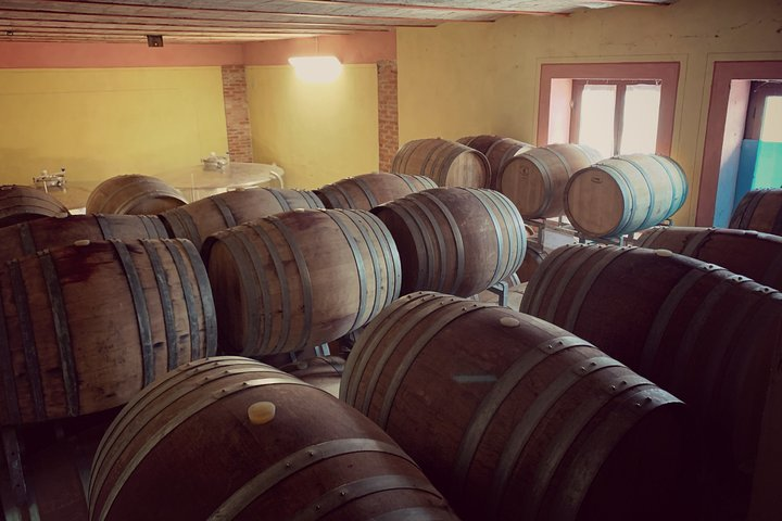 Private Tasting Barbaresco Experience with Typical Products, Asti, ITALIA