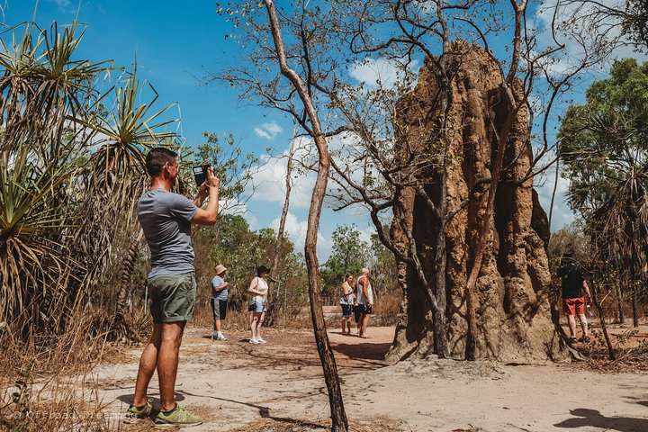 Litchfield National Park Day Tour from Darwin With Waterfalls And Buley Rockhole, ,