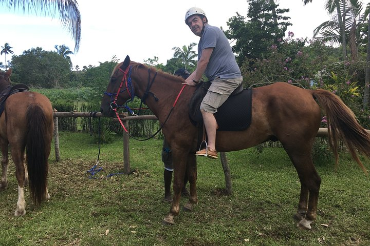 Contador privado de cavalos na Ilha Lenakel Tanna, Isala de Tanna, VANUATU