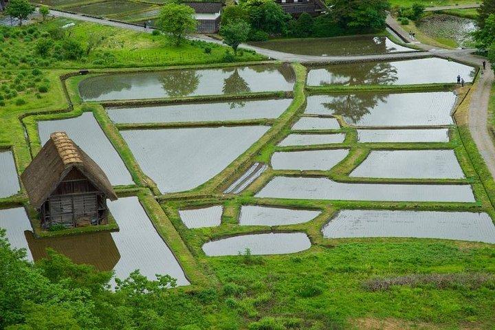 Private Tour of Shirakawago and Gokayama from Kanazawa, Kanazawa, JAPON