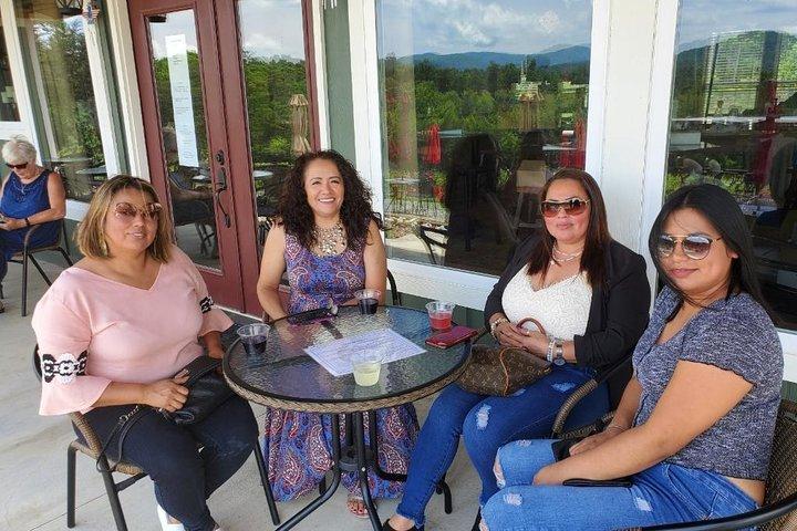 Three Vineyard Classic Wine Tasting Tour, Atlanta, GA, ESTADOS UNIDOS